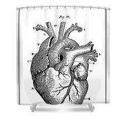 Vintage Anatomical Heart Shower Curtain