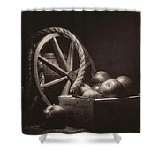 Vintage Apple Basket Still Life Shower Curtain