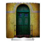 Vintage Arched Door Shower Curtain