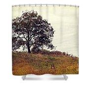 Vintage Autumn Shower Curtain