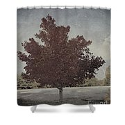 Vintage Autumn Moment Shower Curtain