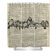 Vintage Birds Dictionary Art Shower Curtain