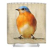 Vintage Bluebird Shower Curtain