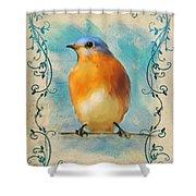 Vintage Bluebird With Flourishes Shower Curtain