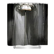 Vintage Bridal Veil Shower Curtain