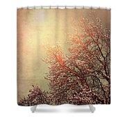 Vintage Cherry Blossom Shower Curtain