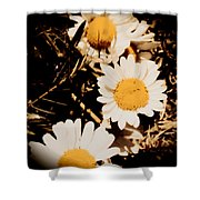 Vintage Daisies Shower Curtain