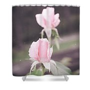 Vintage Double Rose Bud Shower Curtain