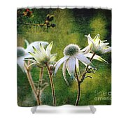 Vintage Flannel Flowers Shower Curtain