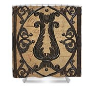 Vintage Iron Scroll Gate 2 Shower Curtain by Debbie DeWitt