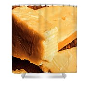 Vintage Italian Cheeses Shower Curtain