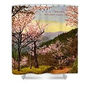 Vintage Japanese Art 14 Shower Curtain