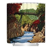 Vintage Japanese Art 18 Shower Curtain