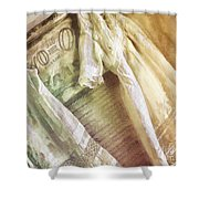 Vintage Laundry Washboard Shower Curtain