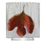 Vintage Leaf Shower Curtain