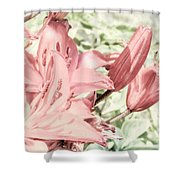 Vintage Lilly Delight Shower Curtain