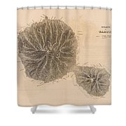 Vintage Map Of Tahiti - 1845 Shower Curtain