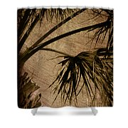 Vintage Palm Shower Curtain