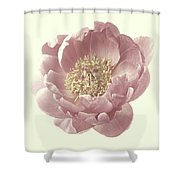 Vintage Peony Flower Shower Curtain