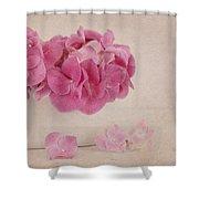 Vintage Pink Hydrangea Shower Curtain