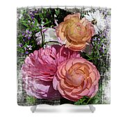 Vintage Ranunculus Shower Curtain