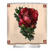 Vintage Red Rose Botanical Shower Curtain