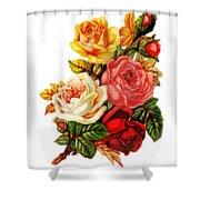 Vintage Rose I Shower Curtain by Kim Kent
