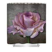 Vintage Rose On Gray Shower Curtain