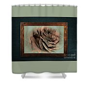Vintage Rose On Old Wall 2 By Kaye Menner Shower Curtain