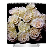 Vintage Roses Bouquet Shower Curtain