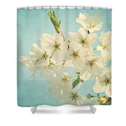 Vintage Spring Blossoms Shower Curtain