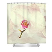 Vintage White Orchids Shower Curtain