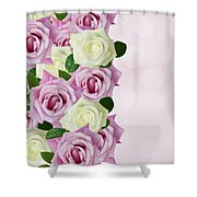 Violet  And White Roses Shower Curtain