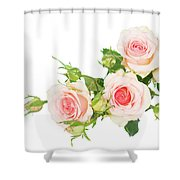 Garden Roses And Buds Shower Curtain