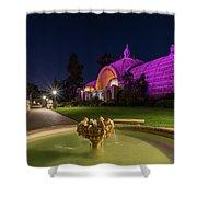 Violet Castles Shower Curtain