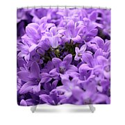 Violet Dream II Shower Curtain