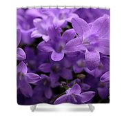 Violet Dream IIi Shower Curtain