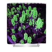 Violet Dream On Green Shower Curtain
