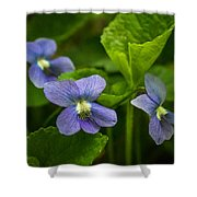 Violet In The Wild Shower Curtain