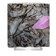 Violet Leaf On The Ground  Shower Curtain