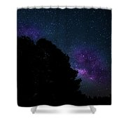 Violet Milk Shower Curtain