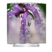 Violet Mist Shower Curtain