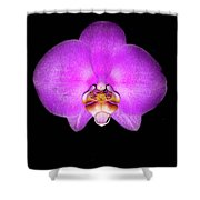 Violet Orchid On Black. Fantasy 7.21.17 Shower Curtain