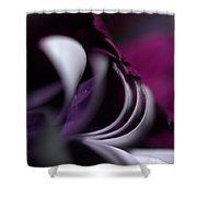 Violet Petals Shower Curtain