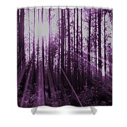Violet Rays Shower Curtain