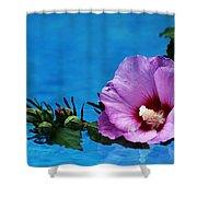 Violet Satin Shower Curtain
