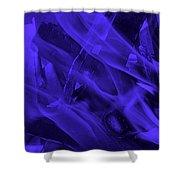Violet Shine I I Shower Curtain
