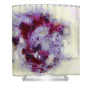 Violets Abstract Shower Curtain