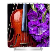 Violin And Purple Glads Shower Curtain by Garry Gay
