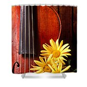 Violin With Daises  Shower Curtain